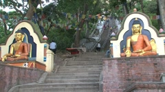 Monkey temple Stock Footage