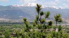 Pikes peak tree foreground Stock Footage