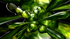 HD 3D Abstract Green Flower Loop - stock footage
