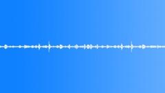 Forest alpine birds light wind 01 120 loop Sound Effect