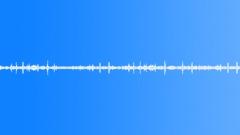 Birds park ambience 02 loop Sound Effect