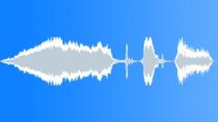 donkey bray 04 - sound effect