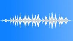 robin 07 - sound effect