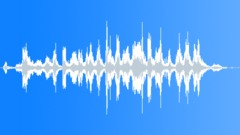 Tropical bird 05 Sound Effect