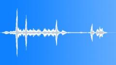 Tropical bird 06 Sound Effect