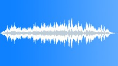 Tropical bird 07 Sound Effect