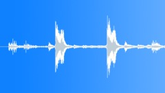 Tropical bird 13 Sound Effect