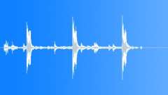 Tropical bird 14 Sound Effect