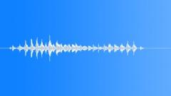 pig vocalizing 01 - sound effect