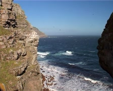 Cape Point Nature Reserve, Cape Town GFSD Stock Footage