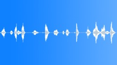 sharpie writing medium 02 - sound effect