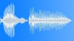 Probebot goodbye Sound Effect