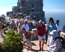 Tourists with Dassie 02, Cape Town GFSD Stock Footage