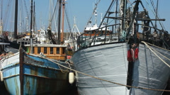 Fishing boats in the harbour at Penzance Cornwall Stock Footage