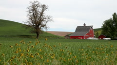 American Farmland Stock Footage
