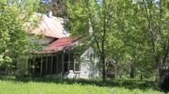 Abandoned house sits behind blowing trees Stock Footage