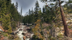 Waterfall sequoia national park california usa Stock Footage