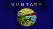 Stock Video Footage of USA State Flag Loop - Montana