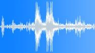 Stock Sound Effects of Turtle Splash Lake