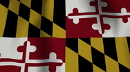 USA State Flag Loop - Maryland Stock Footage