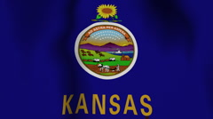 USA State Flag Loop - Kansas - stock footage