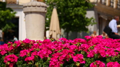 Mediterranean European City Scene 01 2 in 1 Stock Footage