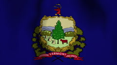USA State Flag Loop - Vermont Stock Footage