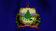 Stock Video Footage of USA State Flag Loop - Vermont