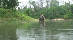 Stock Video Footage of Chitwan Park