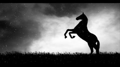 Horse Silhouette Black and White Stock Footage