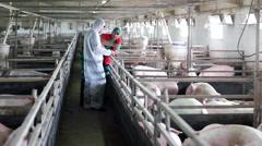 Three Farm Workers Stock Footage