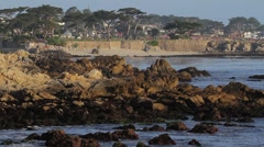 Monterey Shoreline Stock Footage