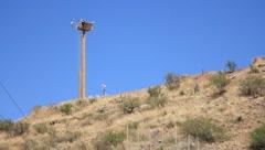Yhdysvaltojen ja Meksikon rajalla Nogales, AZ (HD) c Arkistovideo