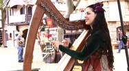 Stock Video Footage of Harp Playing