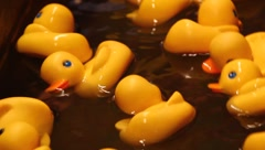 Rubber duckies Stock Footage