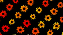 Sunflower wreath wedding background,flower plant bloom pattern,life vitality. Stock Footage