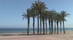 Palm Trees on the Costa Blanca Beach Stock Footage