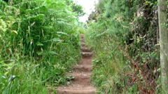 Trudging Up Steps on Country Path Stock Footage