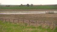 Agriculture, flooded farm fields, #2 Stock Footage