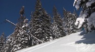Stock Video Footage of two skiers in powder