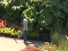 Beautiful Gardens Stock Footage