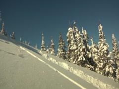 Snowboarder powder Stock Footage