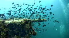 Sugar wreck, perhentian island Stock Footage