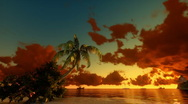 Stock Video Footage of Tropical scene Sunrise Time Lapse