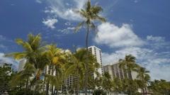 Waikiki beach Palm Tree hotel blue sky Stock Footage