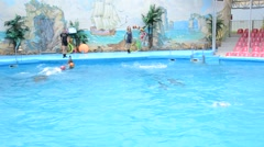 A trainer and dolphins in a show in a delphinarium. Stock Footage