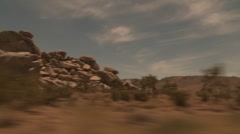 Joshua Tree Tracking Shot from Car Stock Footage
