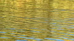 Water and reflections - stock footage
