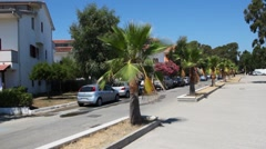 Street town with palm trees in middle of road Stock Footage