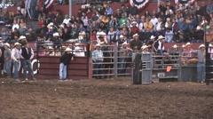 Steer wrestle-miss - stock footage